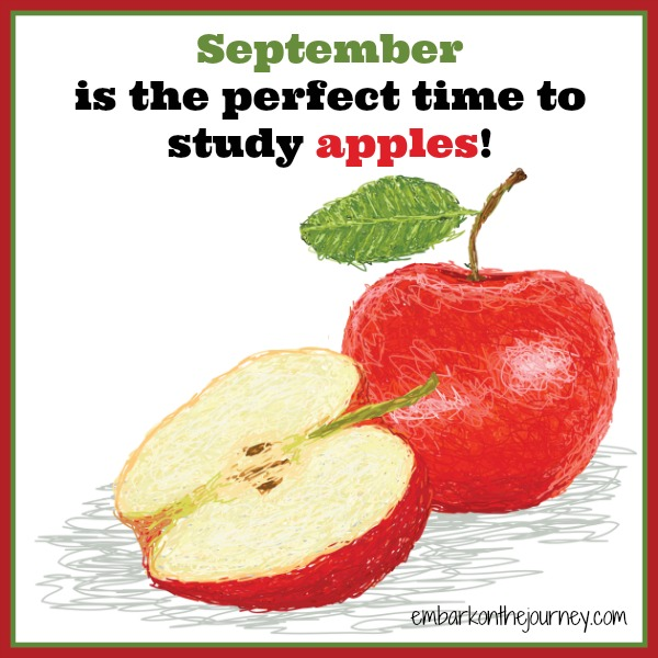 September is for studying apples.