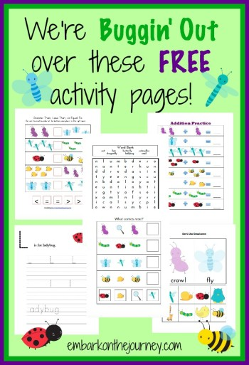Bugs and Insects Printable and Unit Resources