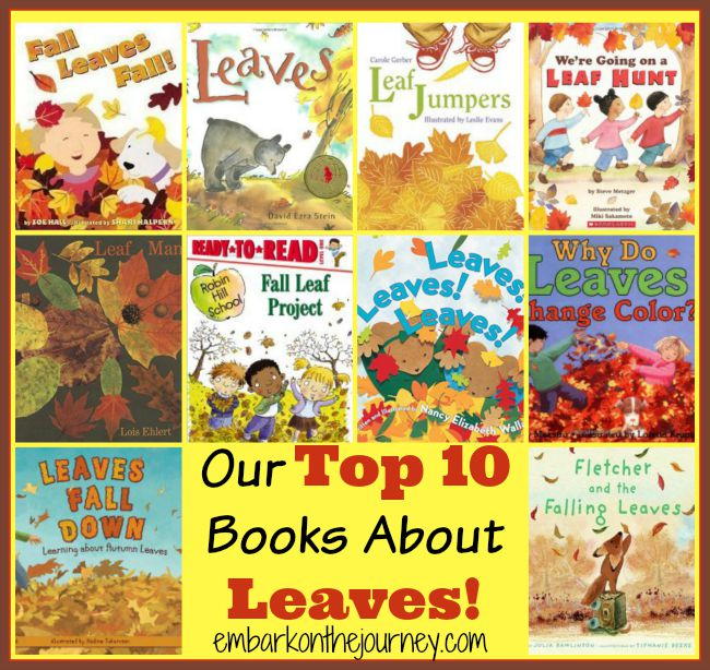 Autumn is just around the corner! Take some time to learn about leaves with our top 10 favorite books about leaves! | embarkonthejourney.com