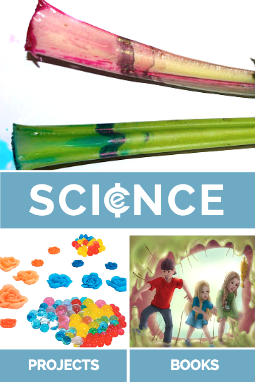 Back to School Science Fun from Educents
