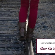 Homeschool Balance: How Do You Do It All