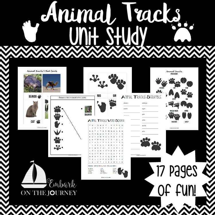 photograph about Printable Animal Tracks identified as Animal Tunes Gadget Examine with Free of charge Printable