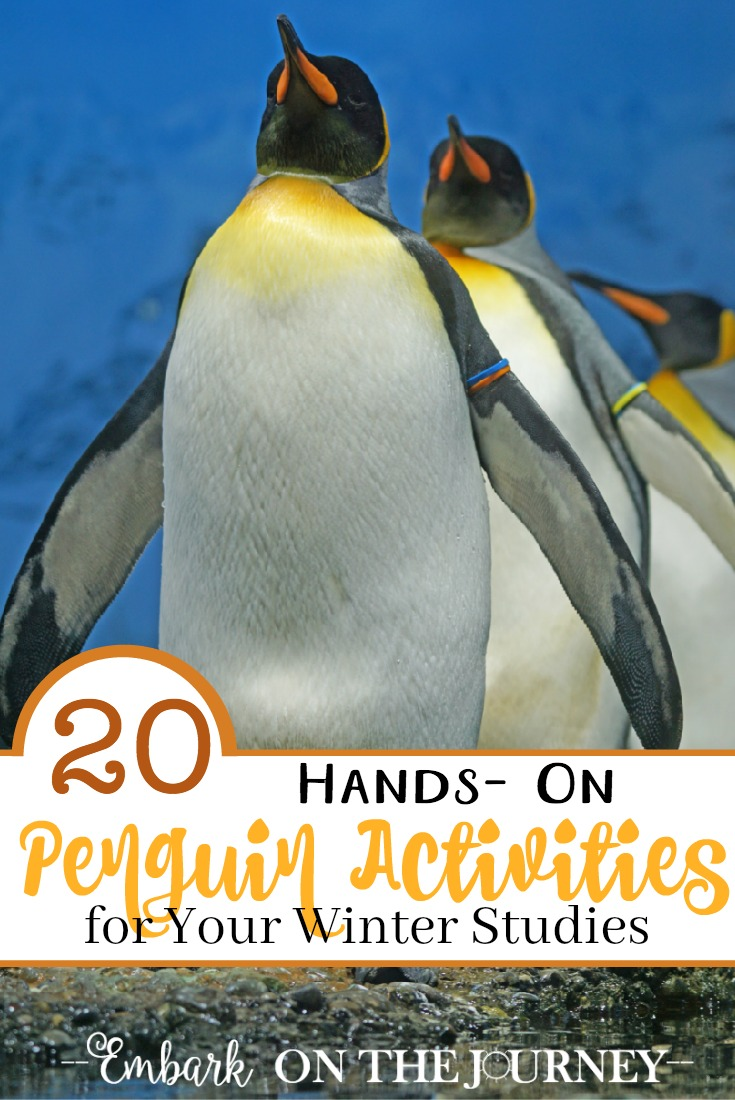 We love studying penguins in the winter! If you do, too, you HAVE to check out this great list of hands-on penguin activities for kids! | embarkonthejourney.com