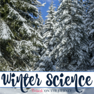 30+ Amazing Winter Science Activities for Kids