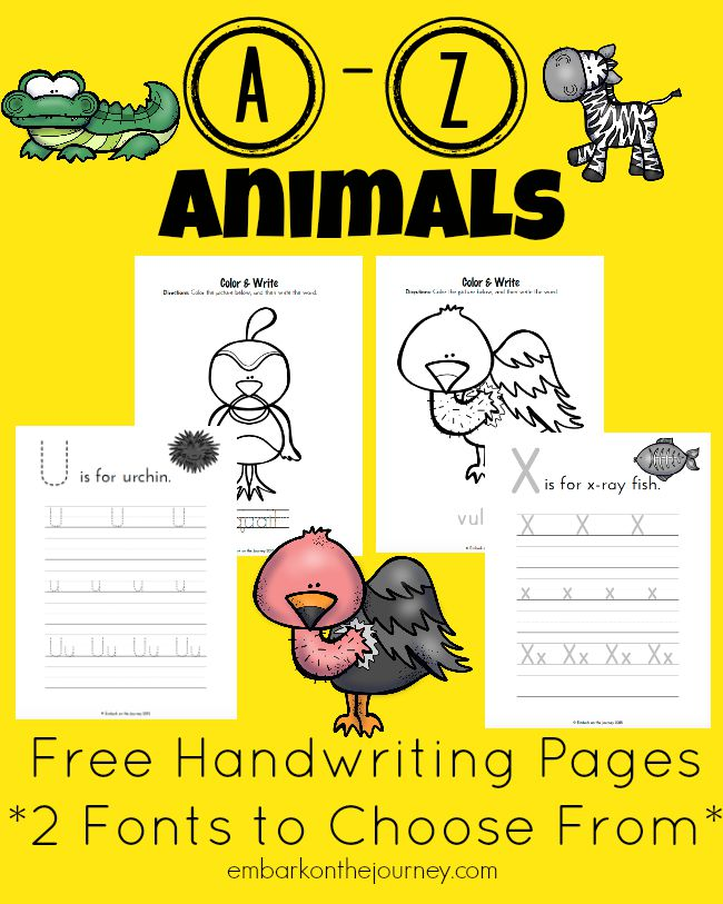 From alligator to zebra, your little ones will love practicing their handwriting with these A to Z Animal pages. Choose from two different handwriting fonts. Each set contains 52 pages! | embarkonthejourney.com