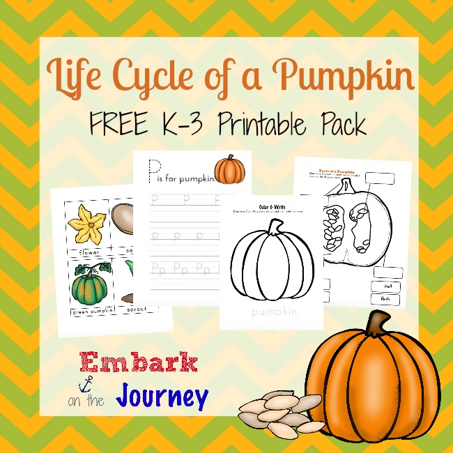 FREE Life Cycle of a Pumpkin Printable Pack