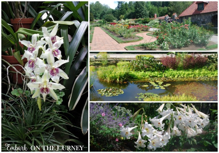 The botanical gardens at Biltmore are my favorite places to explore! | embarkonthejourney.com