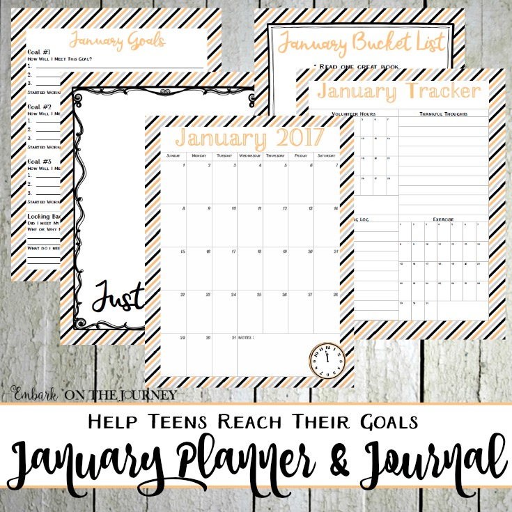 Teen Planner and Journal for January 2017