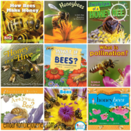 20 Nonfiction Picture Books About Bees