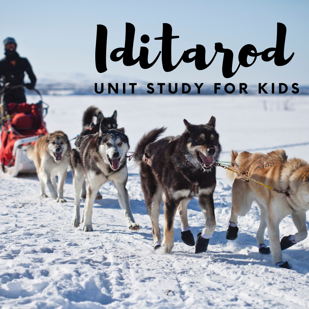 Here is the ultimate list of Iditarod unit study resources! It covers Alaska, the Great Serum Race, the Iditarod, sled dogs, mushers, and more!